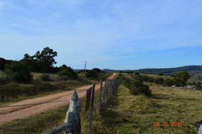 Paraíso Para El Reposo Y El Retozo; Sierra, Campo Y Arroyo.
